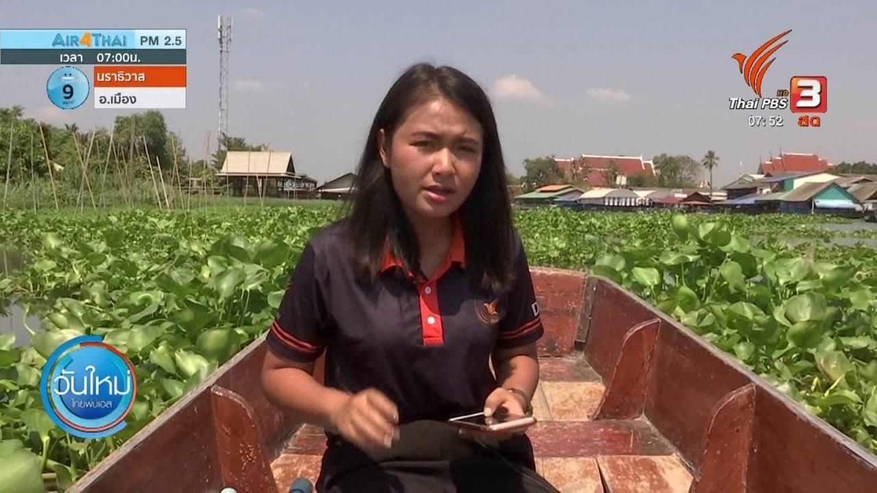 วันใหม่  ไทยพีบีเอส - ทำมาหากิน ดินฟ้าอากาศ : ผักตบชวากีดขวางทางน้ำ ส่งผลต่อการขับเรือ