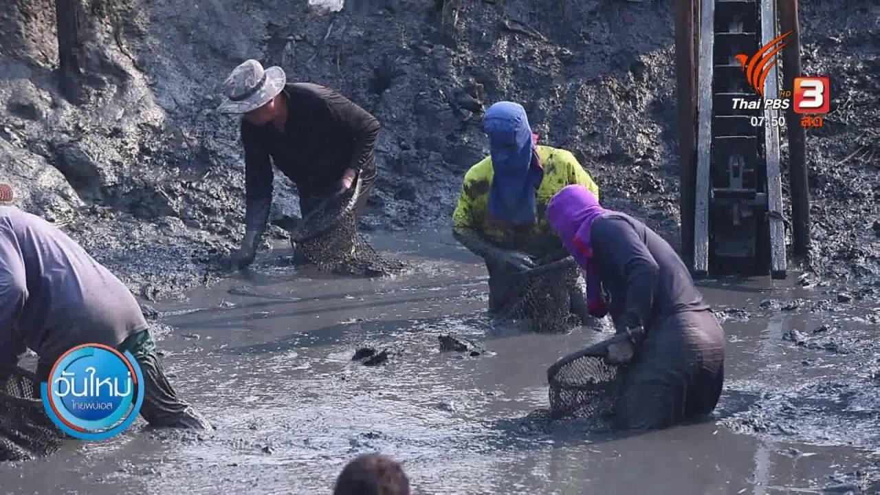 วันใหม่  ไทยพีบีเอส - ทำมาหากิน ดินฟ้าอากาศ : ภัยแล้งกระทบผู้เลี้ยงปลา จ.ฉะเชิงเทรา