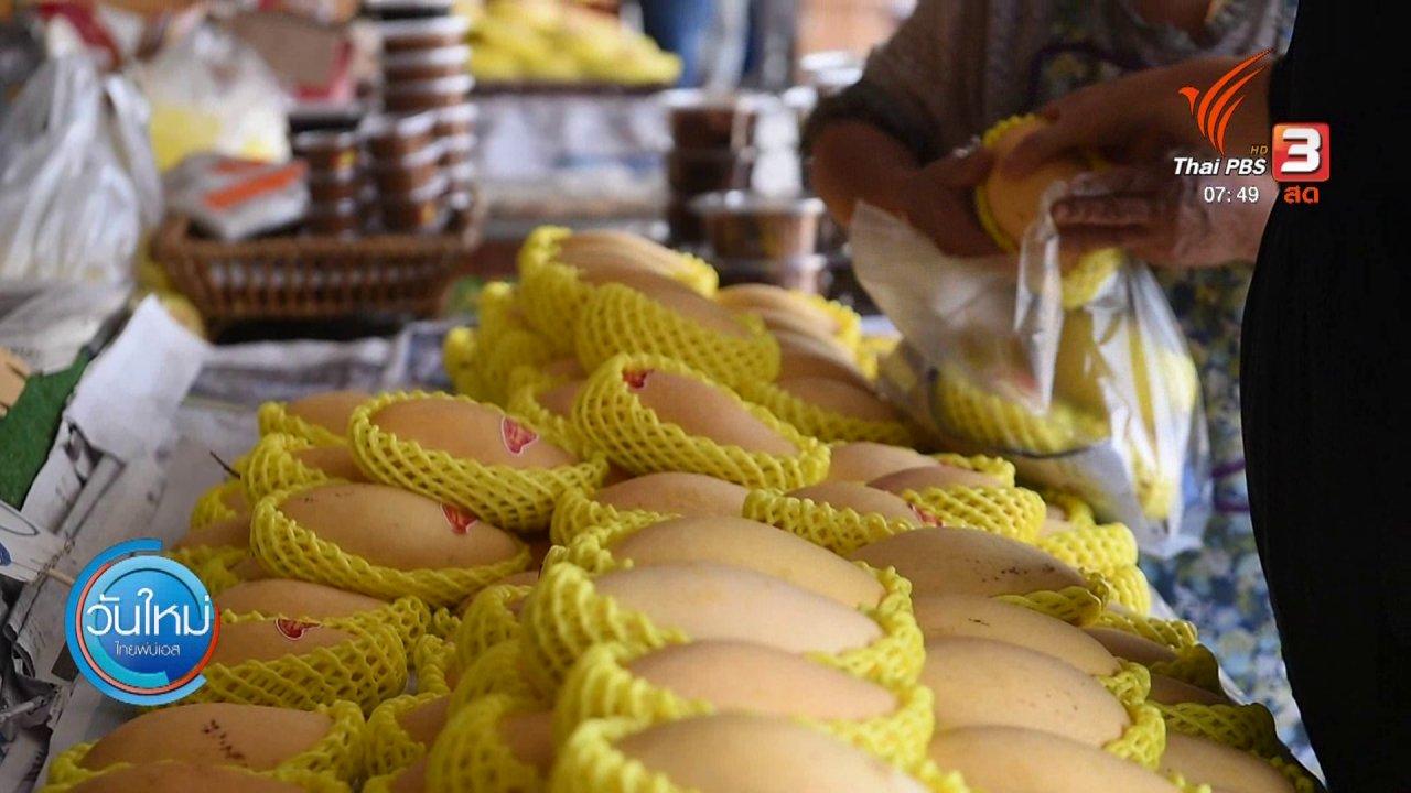วันใหม่  ไทยพีบีเอส - ทำมาหากิน ดินฟ้าอากาศ : พิษเศรษฐกิจกระทบตลาดมะม่วง เมืองแปดริ้ว