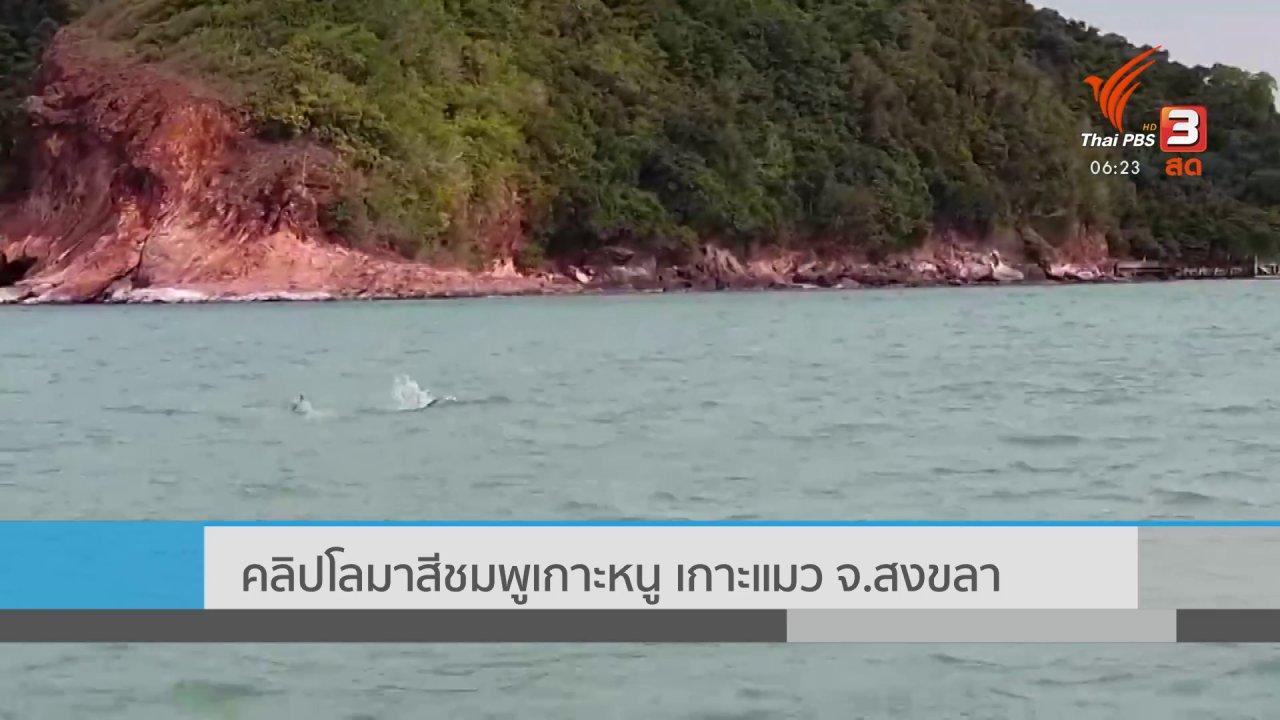 วันใหม่  ไทยพีบีเอส - คลิปโลมาสีชมพู เกาะหนู เกาะแมว จ.สงขลา