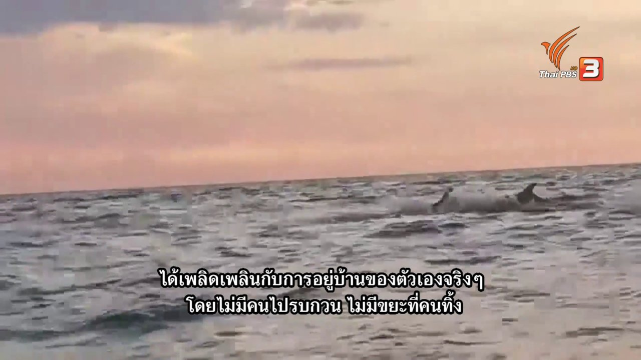 ข่าวเจาะย่อโลก - Thai PBS World คุยกับ รมว.กระทรวงทรัพยากรธรรมชาติฯ โอกาสฟื้นฟูสิ่งแวดล้อมช่วงโรคระบาด