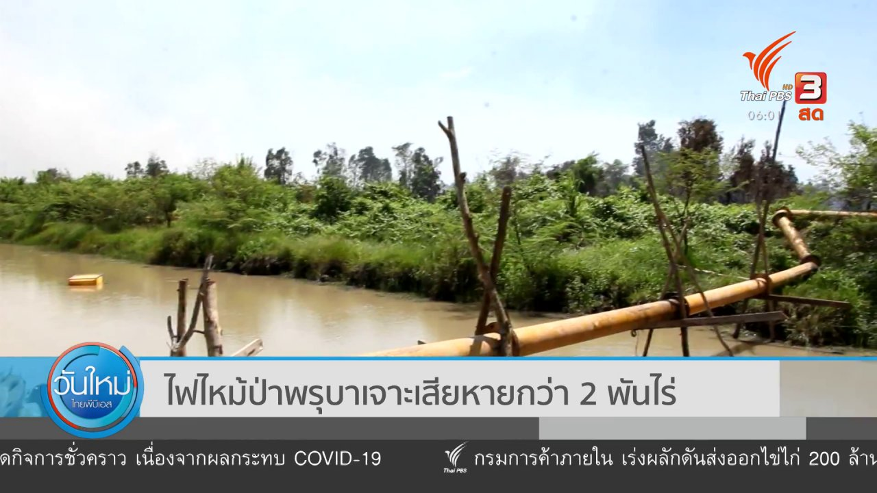 วันใหม่  ไทยพีบีเอส - ไฟไหม้ป่าพรุบาเจาะเสียหายกว่า 2 พันไร่