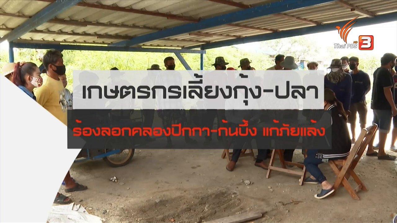 สถานีประชาชน - สถานีร้องเรียน : เกษตรกรเลี้ยงกุ้ง - ปลา ร้องลอกคลองปีกกา - ก้นบึ้ง แก้ภัยแล้ง
