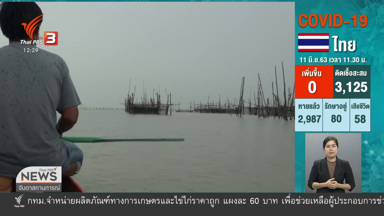 จับตาสถานการณ์ - ปลากะพงประเทศมาเลเซีย ตีตลาดไทย