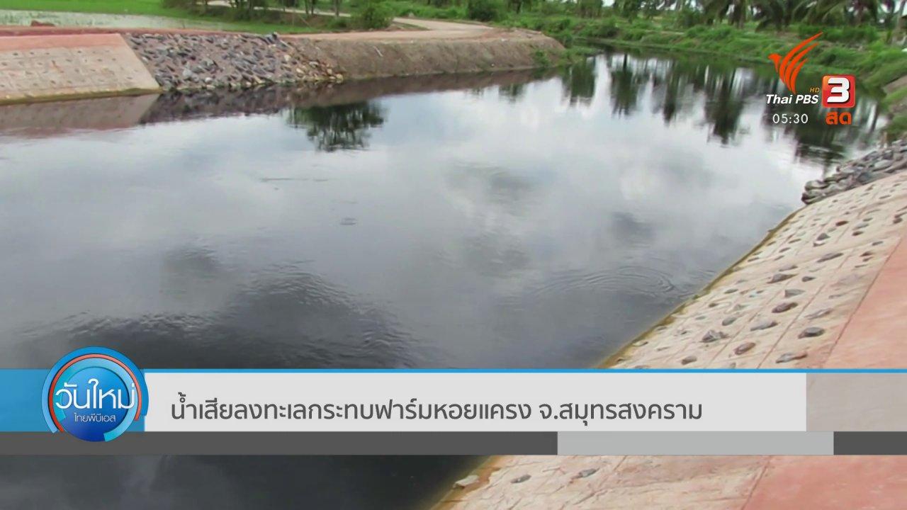 วันใหม่  ไทยพีบีเอส - น้ำเสียลงทะเลกระทบฟาร์มหอยแครง จ.สมุทรสงคราม