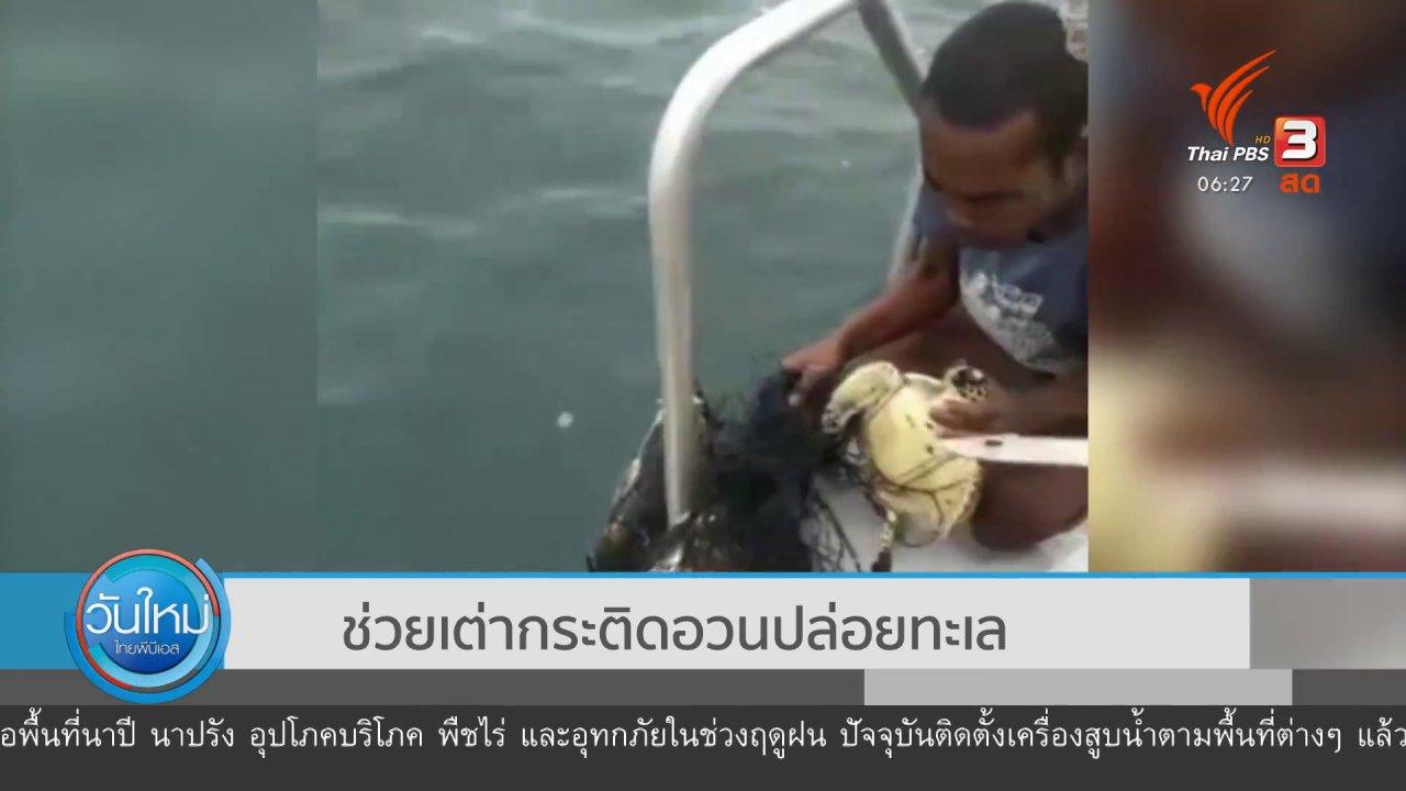 วันใหม่  ไทยพีบีเอส - ช่วยเต่ากระติดอวนปล่อยทะเล