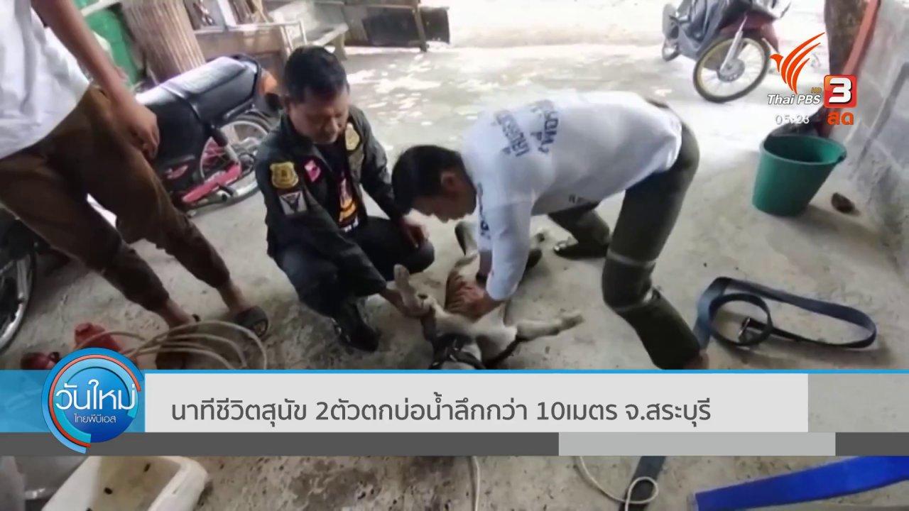 วันใหม่  ไทยพีบีเอส - นาทีชีวิตสุนัข 2ตัวตกบ่อน้ำลึก