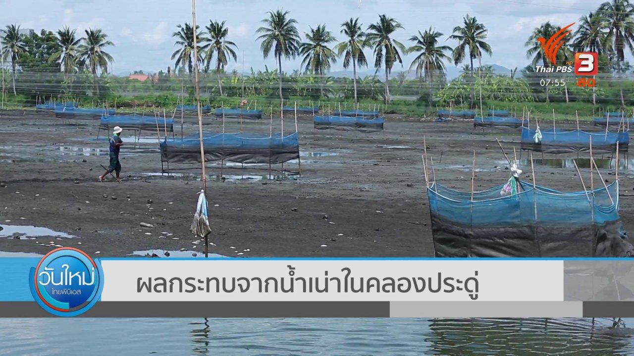 วันใหม่  ไทยพีบีเอส - ตอบโจทย์ภัยพิบัติ : ผลกระทบจากน้ำเน่าในคลองประดู่