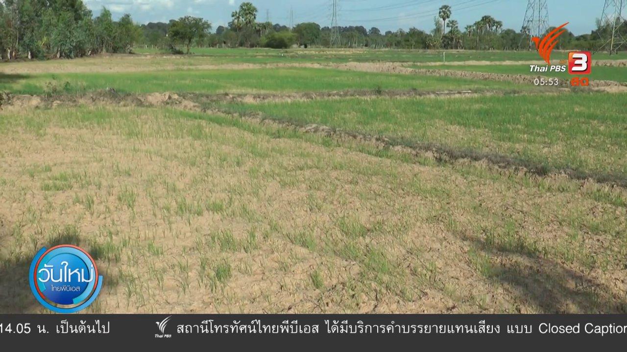 วันใหม่  ไทยพีบีเอส - ภาคอีสานประสบปัญหาฝนทิ้งช่วง
