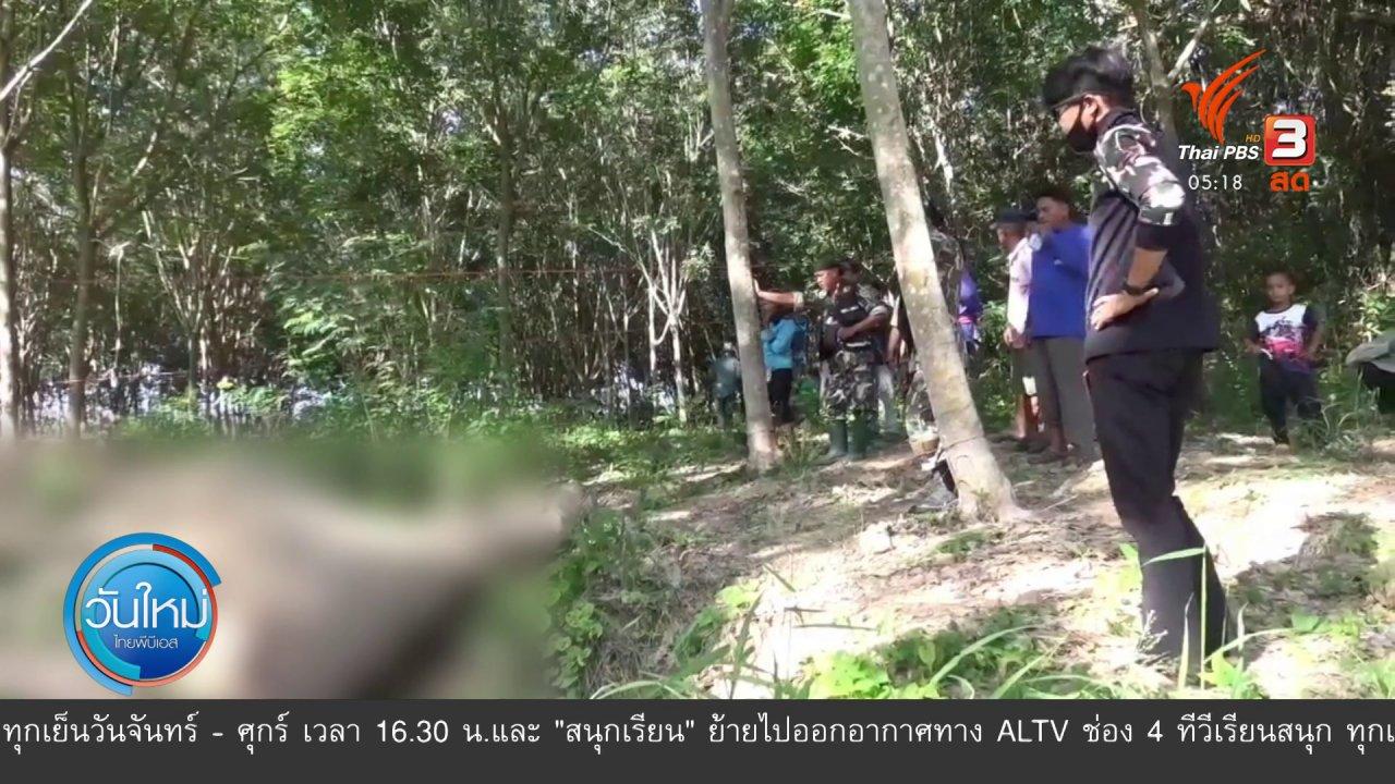 วันใหม่  ไทยพีบีเอส - ช้างป่ากุยบุรีถูกยิงตายคาสวนยาง จ.ประจวบคีรีขันธ์