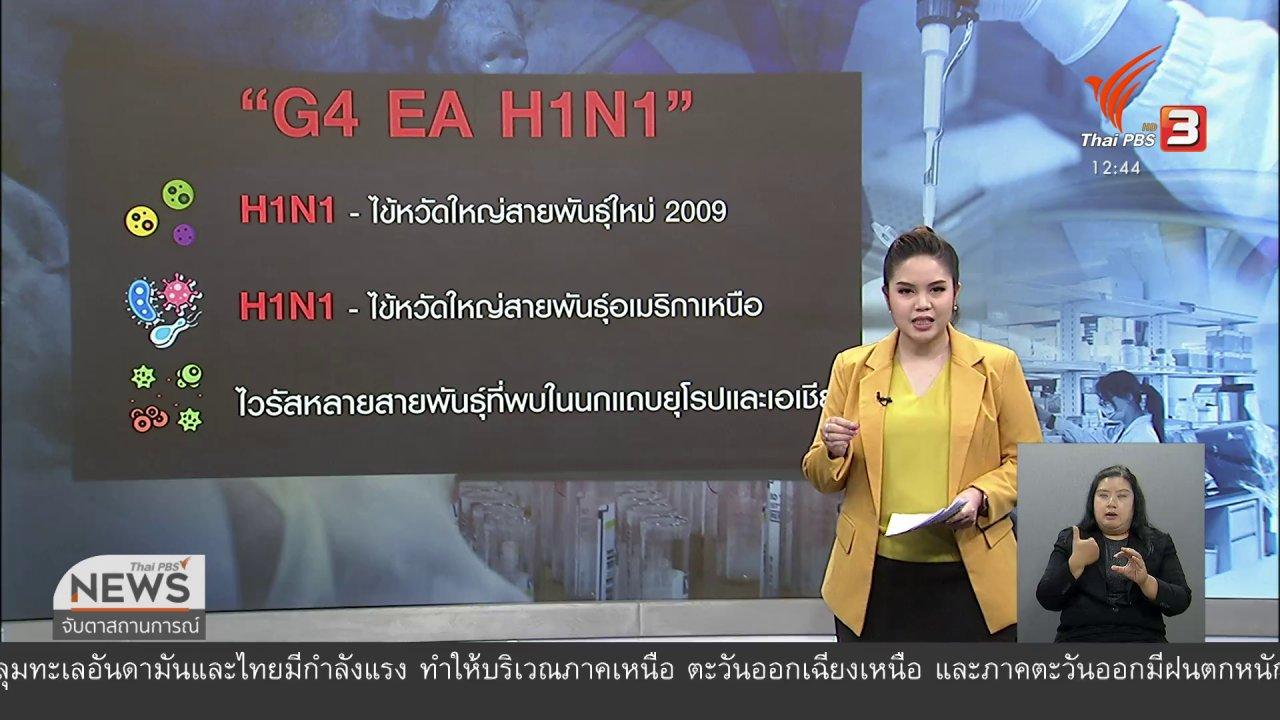 """จับตาสถานการณ์ - ไวรัส G4 ไวรัสใหม่จาก """"หมู"""" ?"""