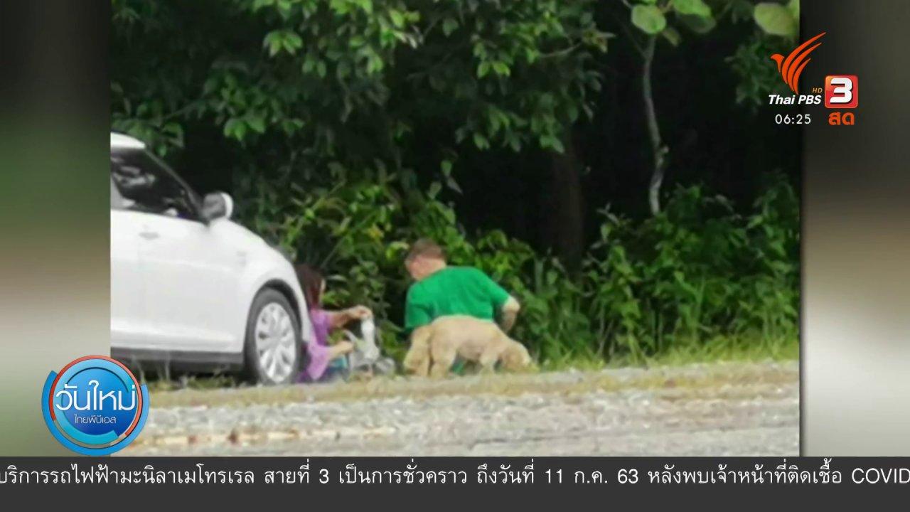วันใหม่  ไทยพีบีเอส - อช.เขาใหญ่ชี้นำสุนัขเข้าพื้นที่อาจปรับเป็นแสน