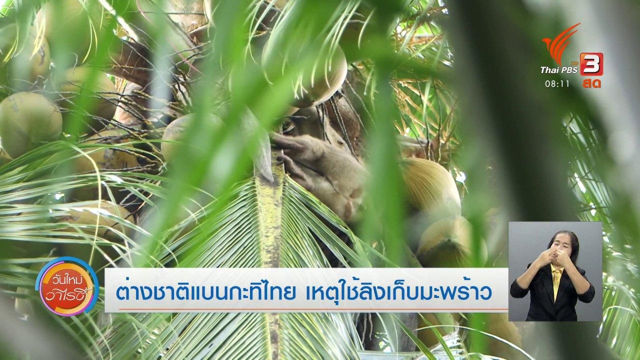 วันใหม่วาไรตี้ - จับตาข่าวเด่น : ต่างชาติแบนกะทิไทย เหตุใช้ลิงเก็บมะพร้าว