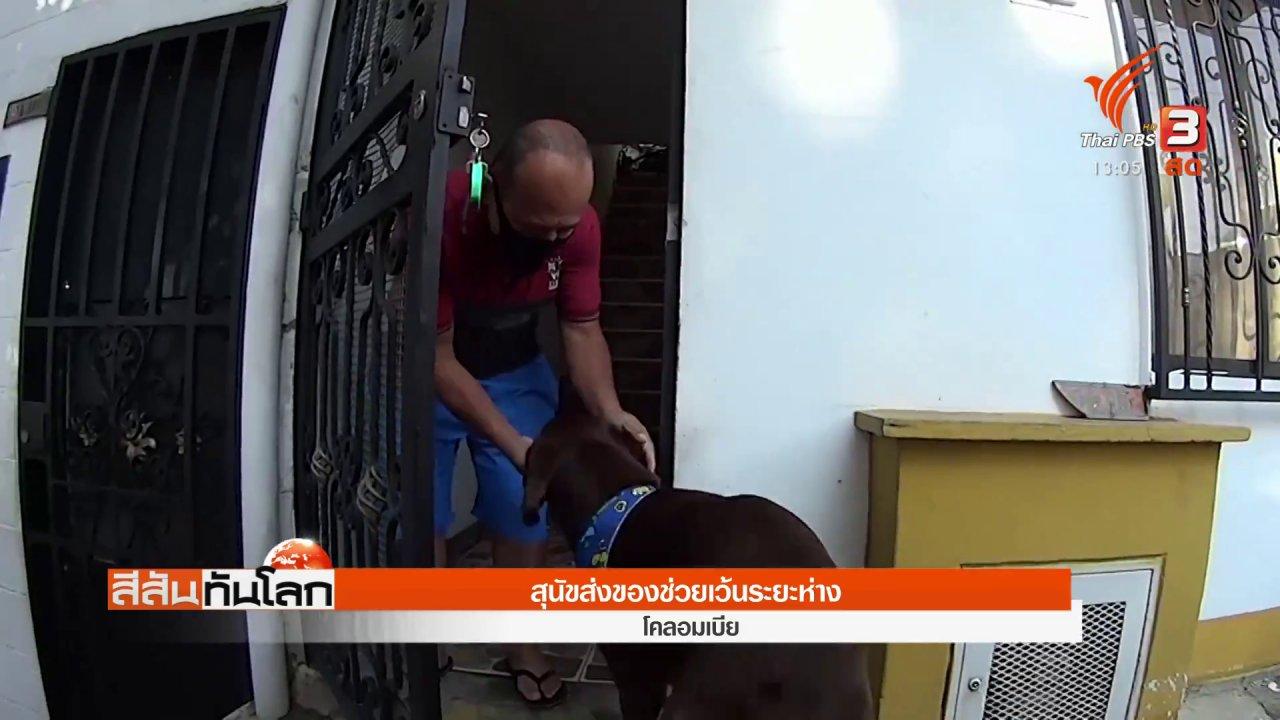 สีสันทันโลก - สุนัขส่งของช่วยเว้นระยะห่าง