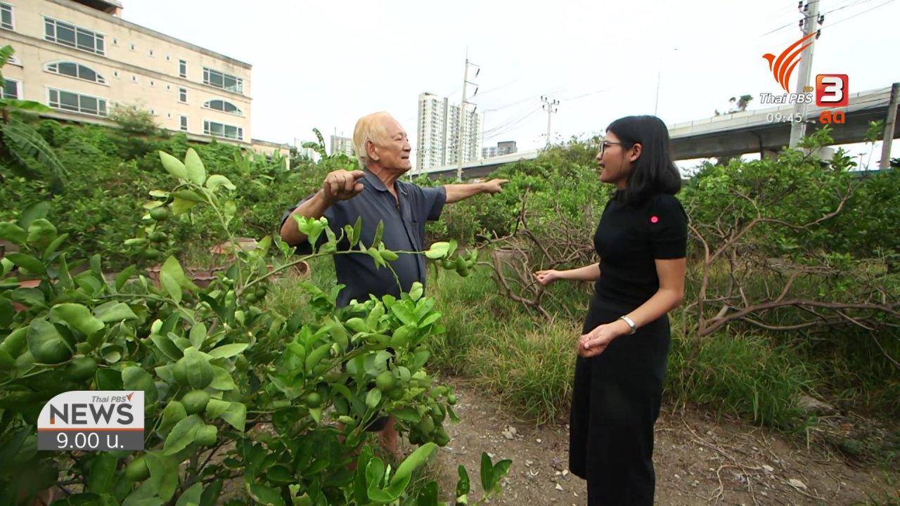ข่าว 9 โมง - ชีวิตติดดิน : สวนมะนาวร้อยล้านความสุขยั่งยืนกลางกรุงฯ