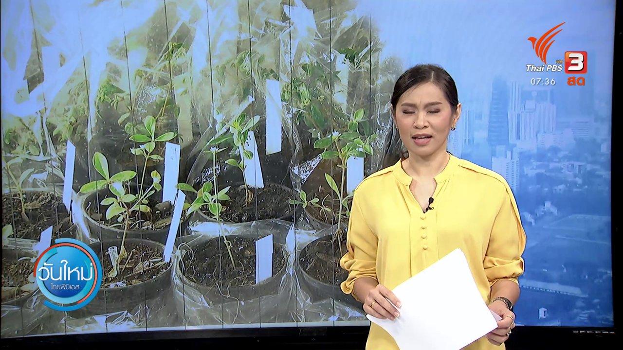 วันใหม่  ไทยพีบีเอส - กินอยู่รู้รอบ : ก.เกษตรฯ ยืนยันแบนสารเคมีอันตราย