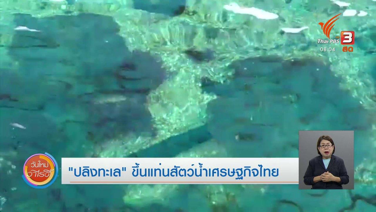 """วันใหม่วาไรตี้ - จับตาข่าวเด่น : """"ปลิงทะเล"""" ขึ้นแท่นสัตว์น้ำเศรษฐกิจไทย"""