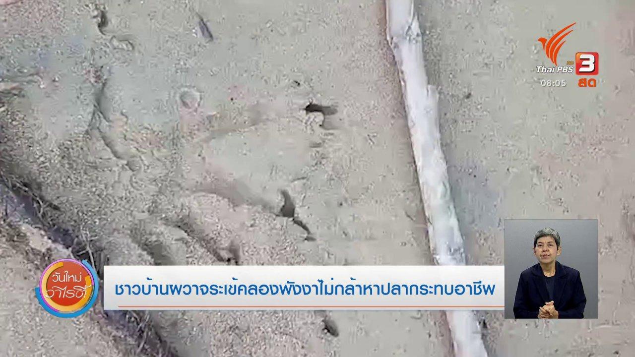 วันใหม่วาไรตี้ - จับตาข่าวเด่น : ชาวบ้านผวาจระเข้คลองพังงา ไม่กล้าหาปลา กระทบอาชีพ