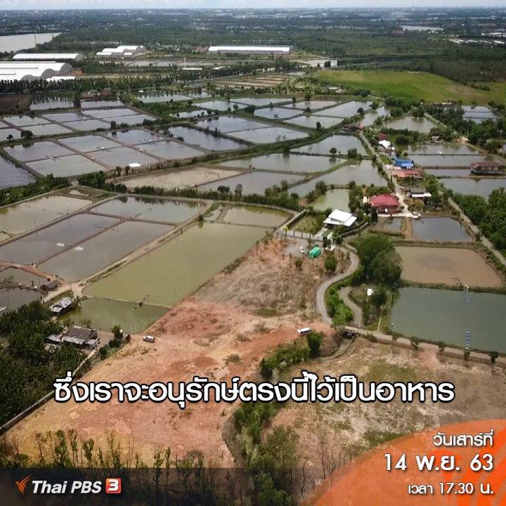 ฟังเสียงประเทศไทย - ต้องเปลี่ยนแหล่งอาหารที่สมบูรณ์ที่สุดไปเป็นอุตสาหกรรม