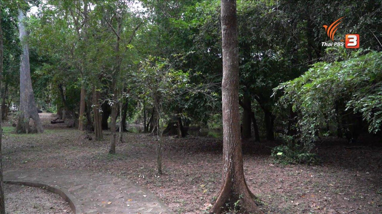 วันใหม่วาไรตี้ - แสงจากพ่อ สู่ความยั่งยืน : สวนพฤกษศาสตร์พุแค ต่อยอดเพื่อต้นไม้ของพ่อ