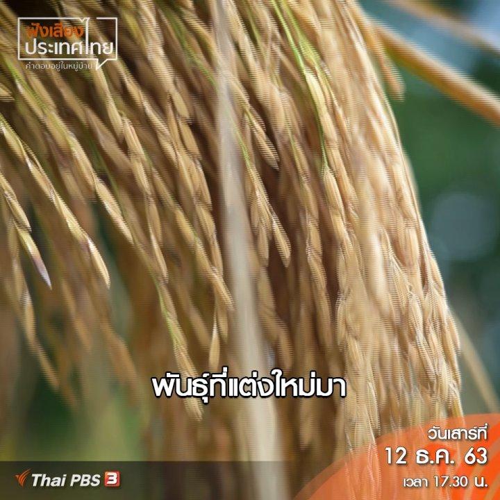 ฟังเสียงประเทศไทย - ศักดิ์ศรีของชาวนาคือการได้ตั้งราคาข้าวเอง