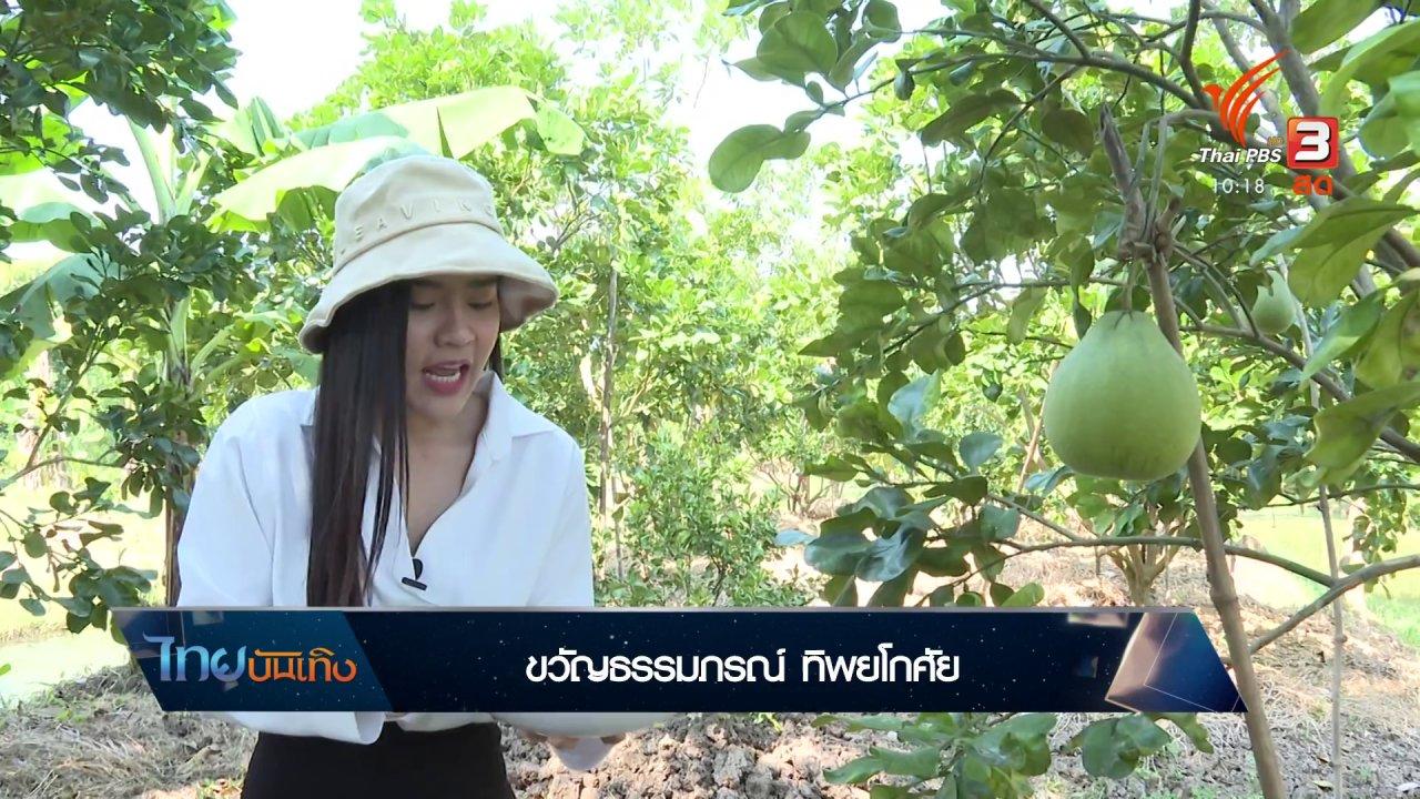 ไทยบันเทิง - อิ่มมนต์รส : เมนูสุขภาพจากส้มโอทับทิมสยาม ชุมชนบางกรวย
