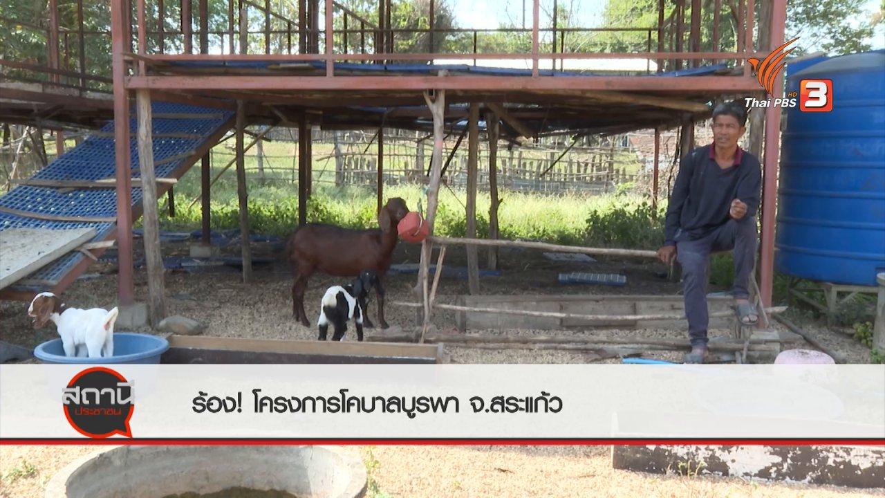สถานีประชาชน - สถานีร้องเรียน : ร้องโครงการโคบาลบูรพา ไม่สร้างรายได้ - วัวด้อยคุณภาพ จ.สระแก้ว