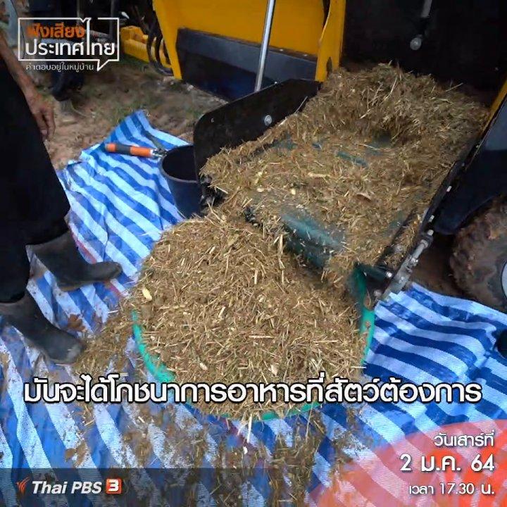 ฟังเสียงประเทศไทย - ใช้วัสดุท้องถิ่น นำมาผลิตอาหารโคขุน