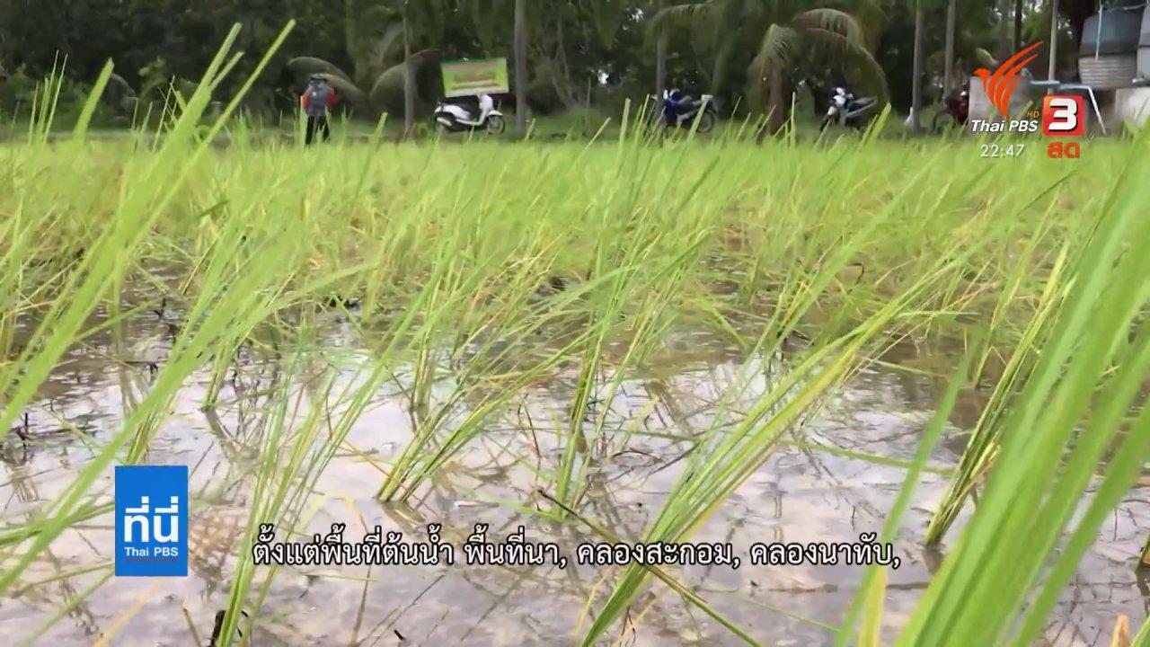ที่นี่ Thai PBS - นักศึกษา 3 สถาบันลงพื้นที่ ทำผังภูมิเชิงนิเวศชุมชนจะนะ