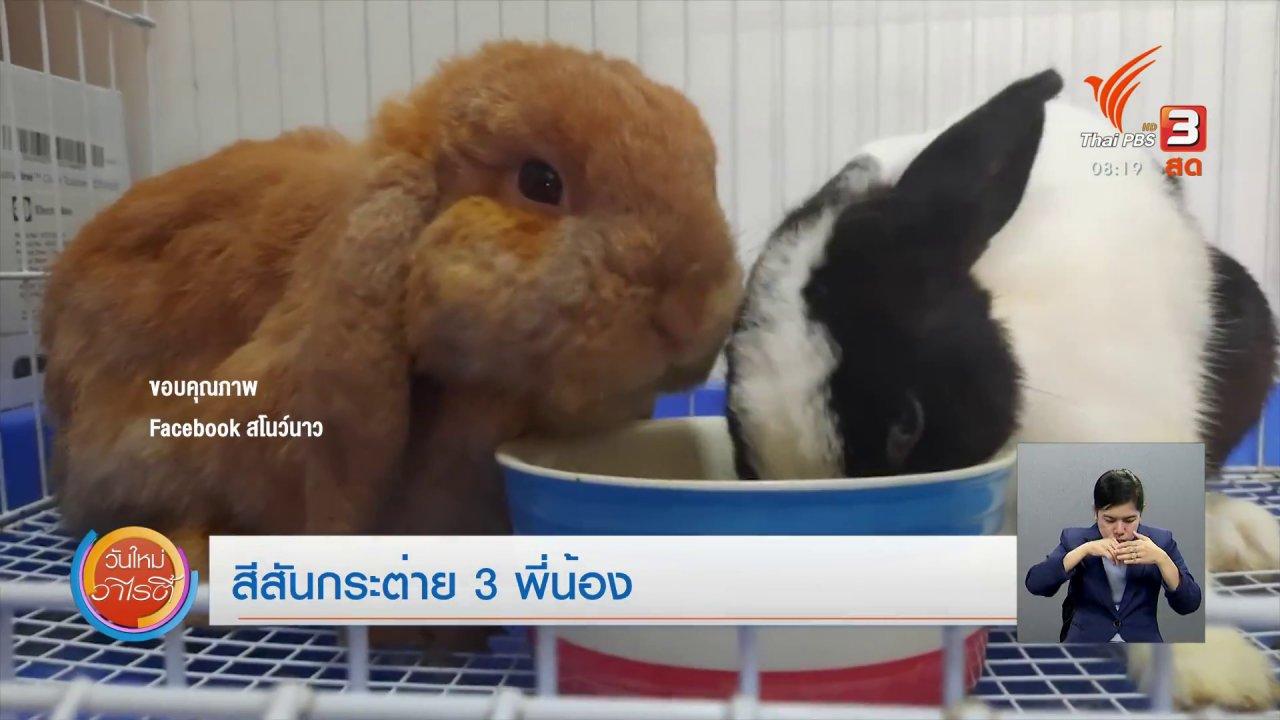 """วันใหม่วาไรตี้ - จับตาข่าวเด่น : ฉลองวันเกิดกระต่าย """"ปลานิล"""""""