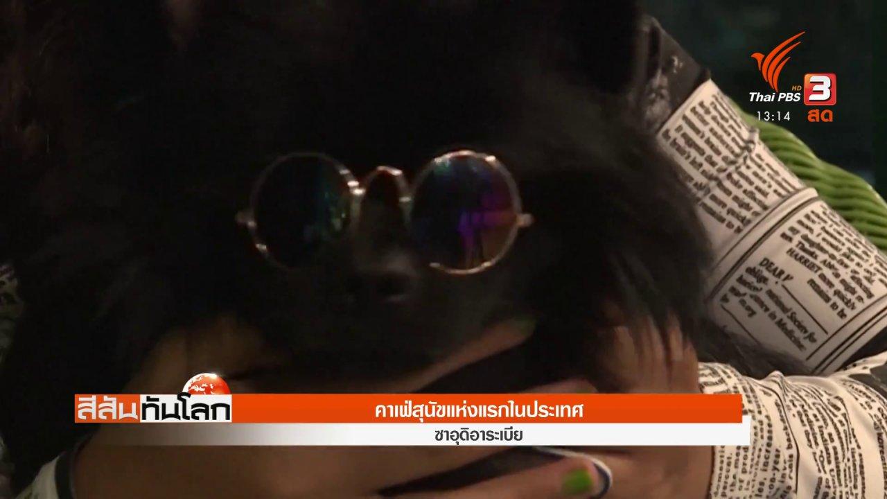 สีสันทันโลก - คาเฟ่สุนัขแห่งแรกในประเทศ