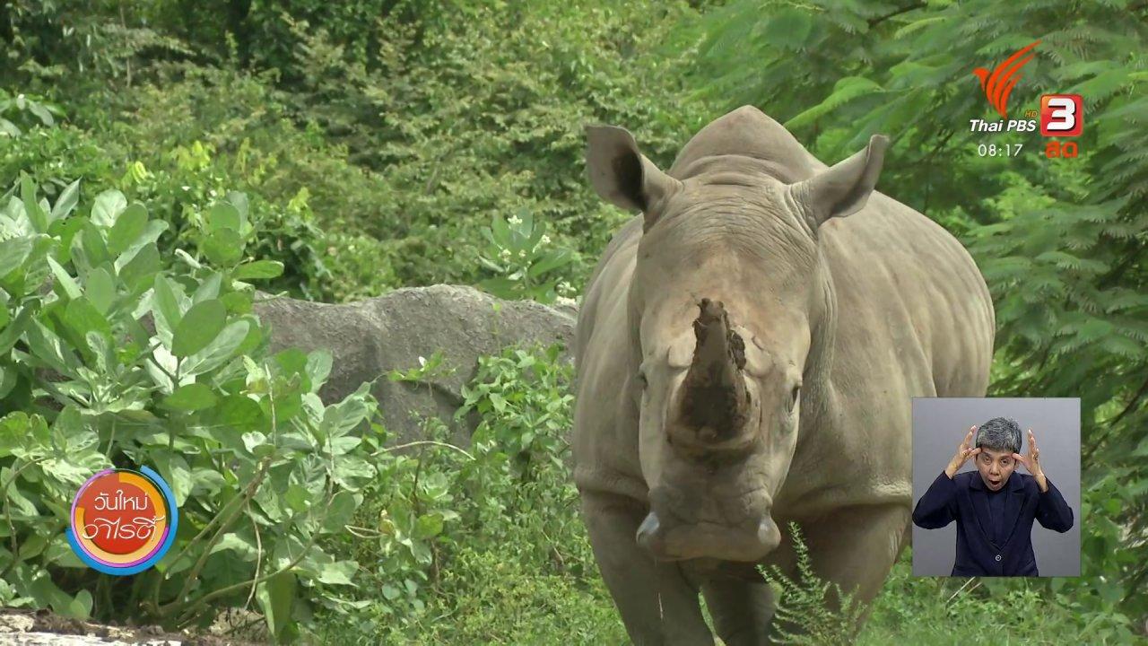 วันใหม่วาไรตี้ - จับตาข่าวเด่น : สถานการณ์ล่าสัตว์ป่าในประเทศไทย
