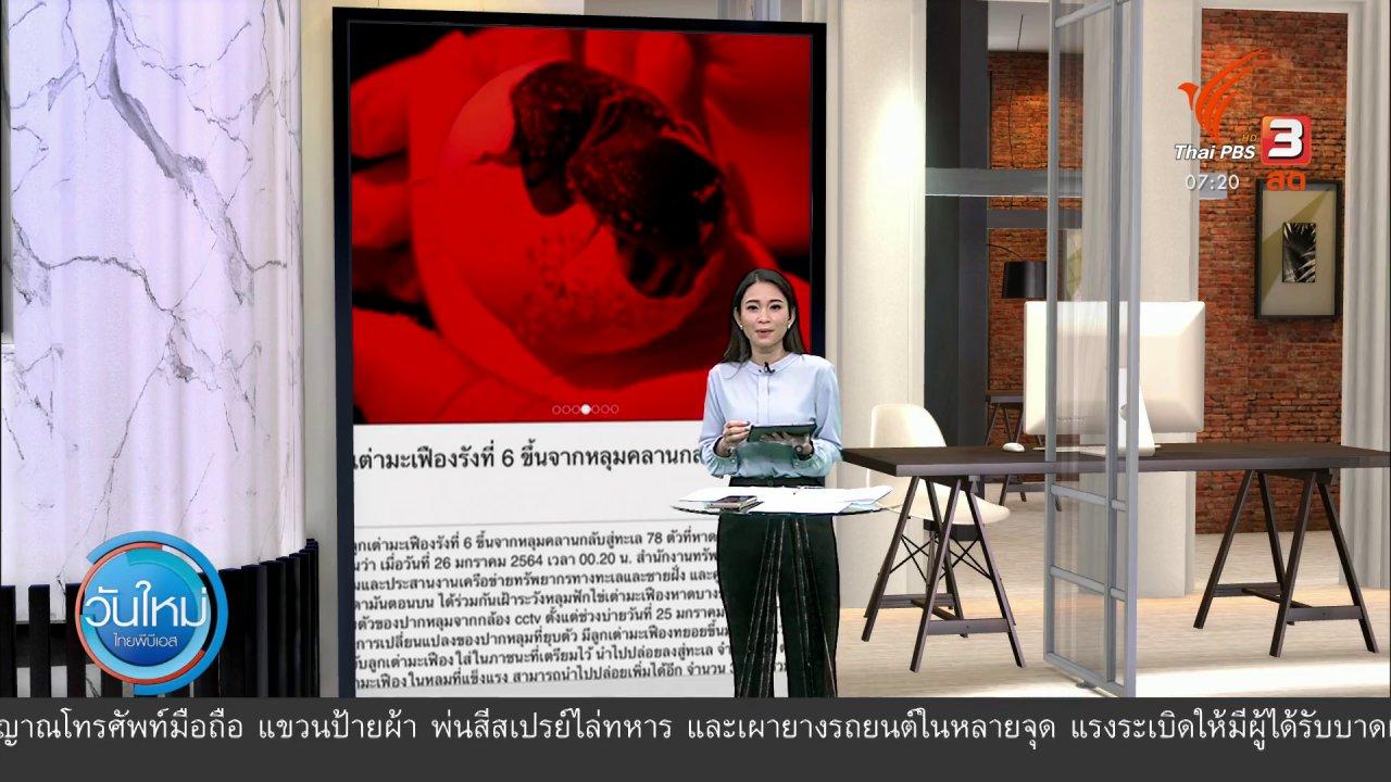 วันใหม่  ไทยพีบีเอส - C-Site Focus พิกัดข่าว : ทุบสถิติในรอบ 10 ปี เต่ามะเฟืองวางไข่