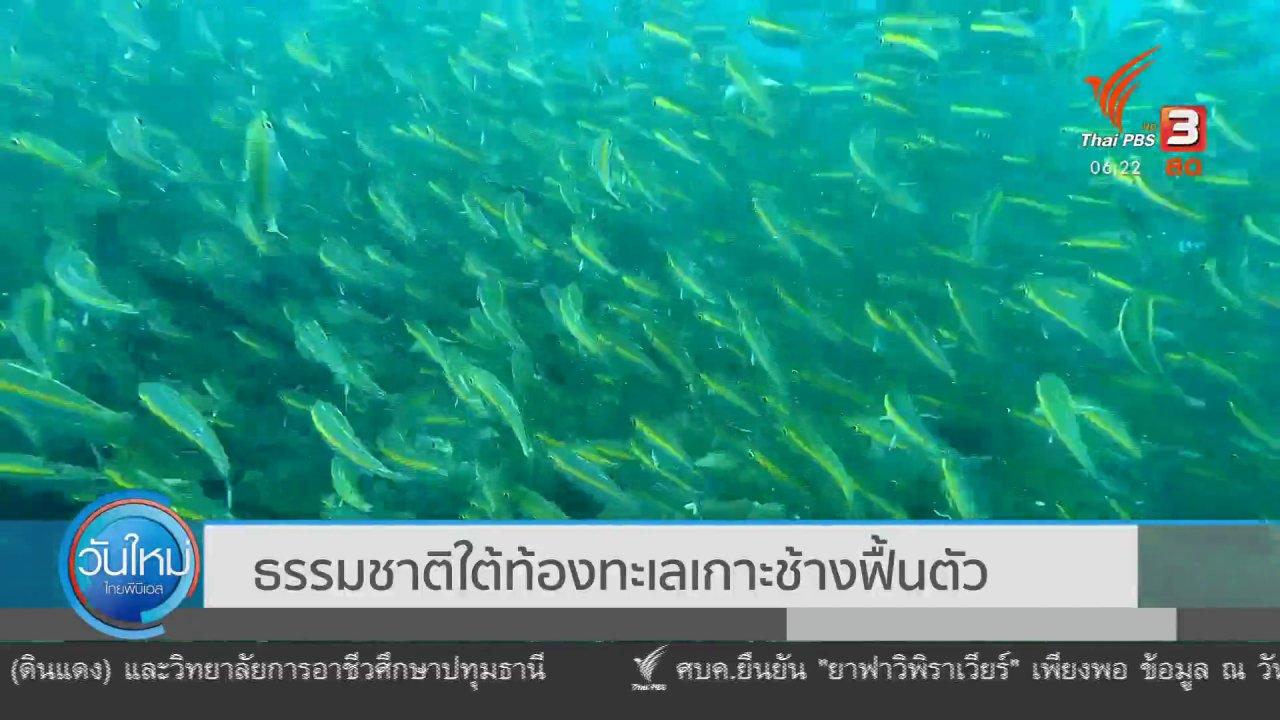 ธรรมชาติใต้ท้องทะเล
