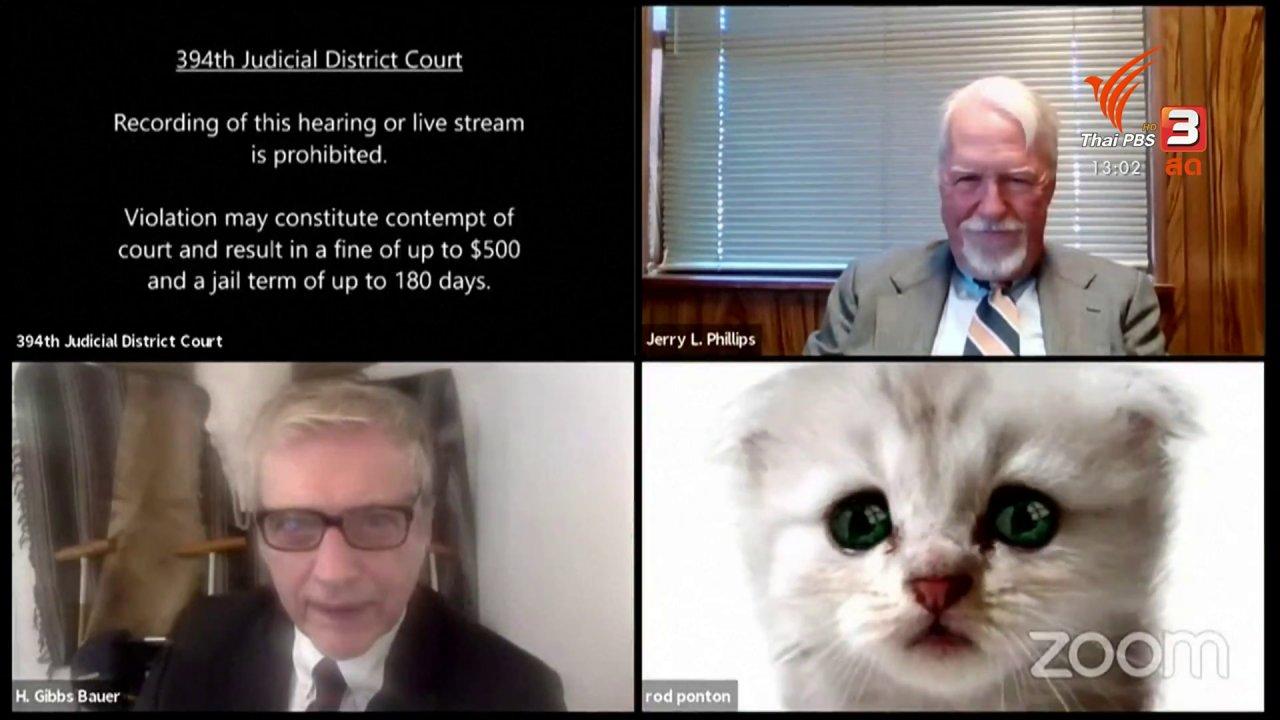สีสันทันโลก - อัยการเปิดฟิลเตอร์แมวร่วมการไต่สวนออนไลน์
