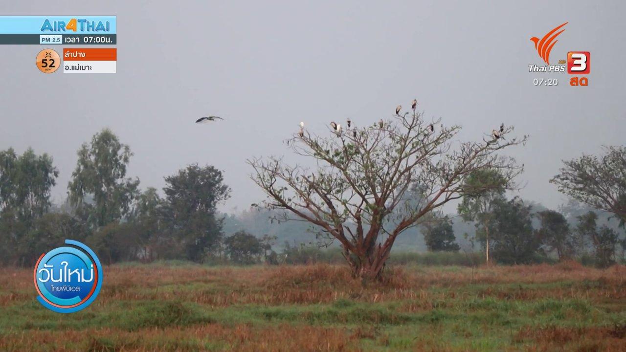 วันใหม่  ไทยพีบีเอส - C-Site Focus พิกัดข่าว : Bird Walk สำรวจนกเพื่อสร้างการอยู่ร่วมแบบยั่งยืน