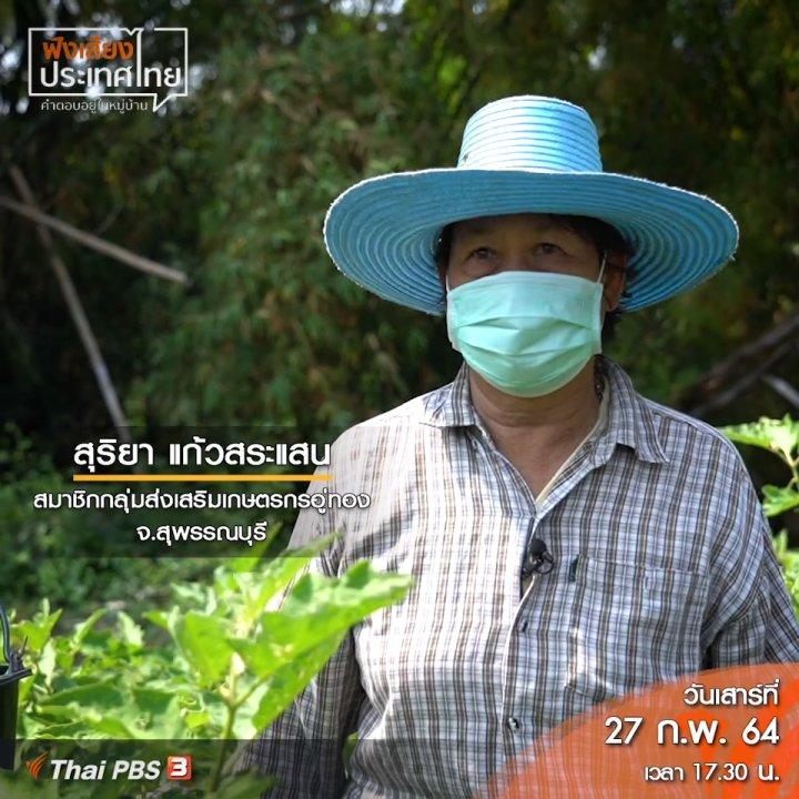 ฟังเสียงประเทศไทย - กางมุ้งให้ผักอินทรีย์ต้นทุนหลักหมื่น