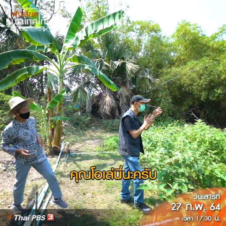 ฟังเสียงประเทศไทย - จุดเริ่มต้น City Farm Market เกษตรอินทรีย์ที่ยั่งยืน