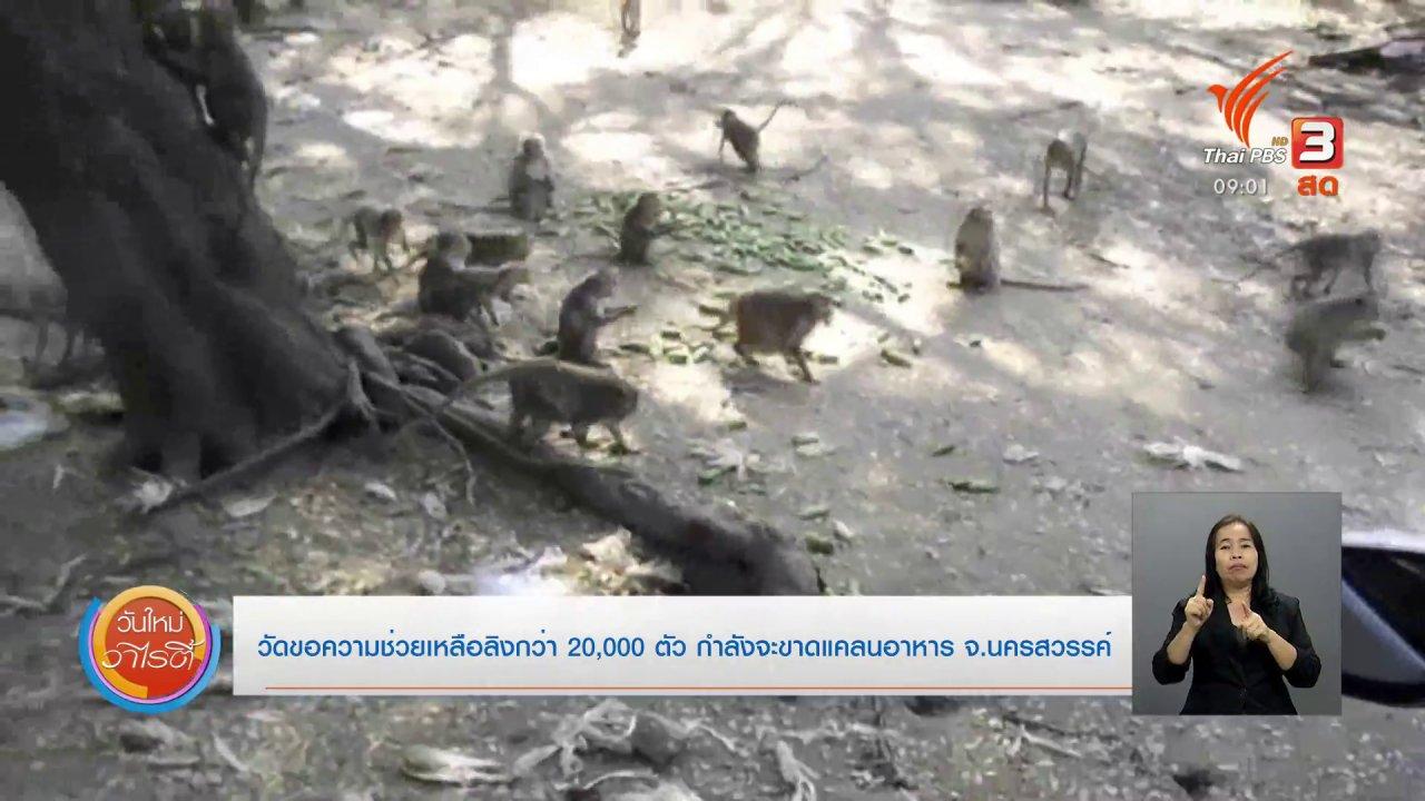 ร้องทุก(ข์) ลงป้ายนี้ - วัดขอความช่วยเหลือลิงกว่า 20,000 ตัว กำลังขาดแคลนอาหาร จ.นครสวรรค์