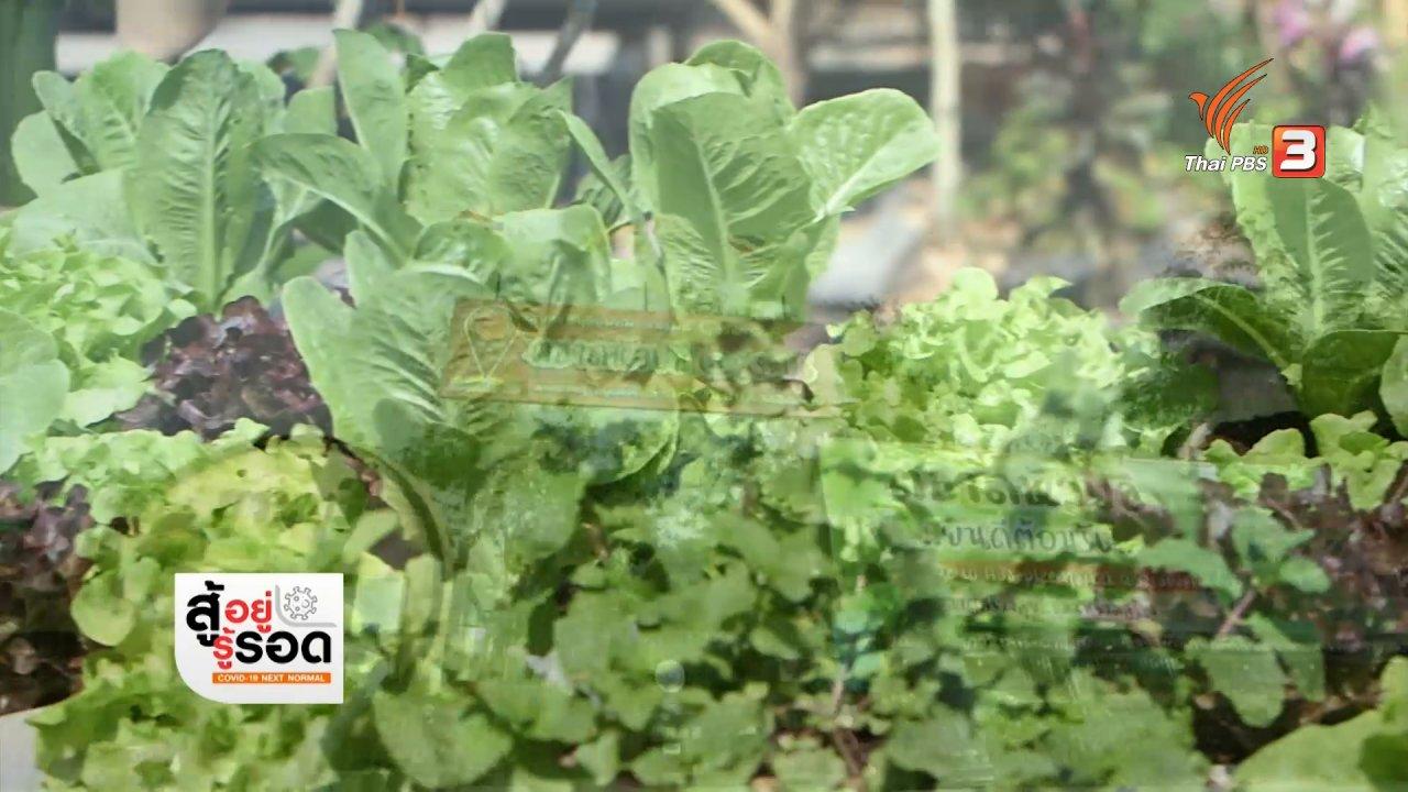 สถานีประชาชน - สถานีร้องเรียน : ตลาดหัวปลี ศูนย์เกษตรเพื่อชุมชน จ.สระบุรี