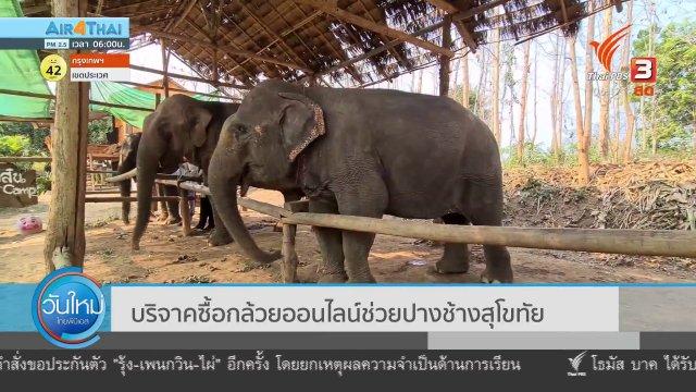 บริจาคซื้อกล้วยออนไลน์ช่วยปางช้างสุโขทัย