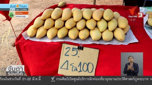 ชาวสวนมะม่วงร้องแก้ปัญหาราคาตกต่ำ