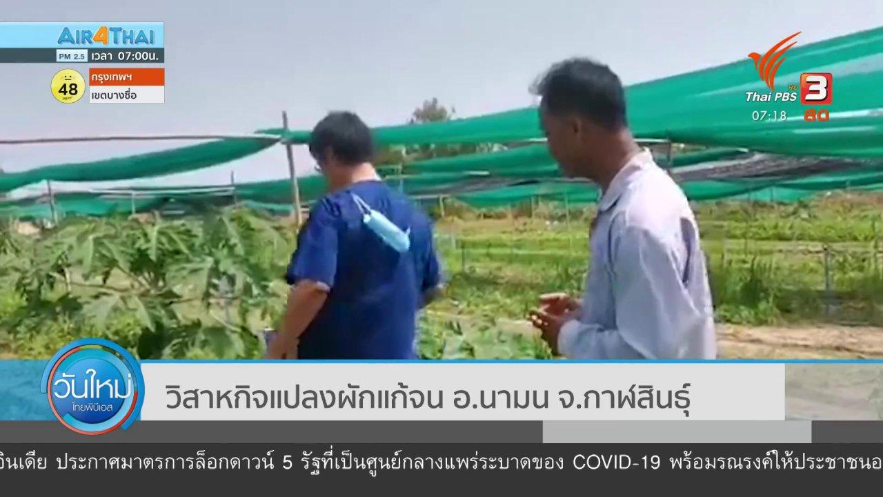 วันใหม่  ไทยพีบีเอส - C-Site Focus พิกัดข่าว : วิสาหกิจแปลงผักแก้จน อ.นามน จ.กาฬสินธุ์