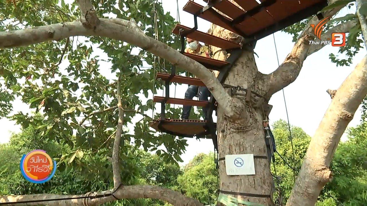 วันใหม่วาไรตี้ - วันใหม่วาไรตี้วันหยุด : ชมวิวจิบเครื่องดื่มบนยอดไม้สูง 15 เมตร